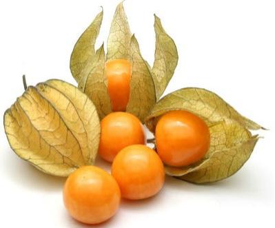 Cape Gooseberry Recipes