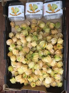 Cape Gooseberries Loose and Packaged