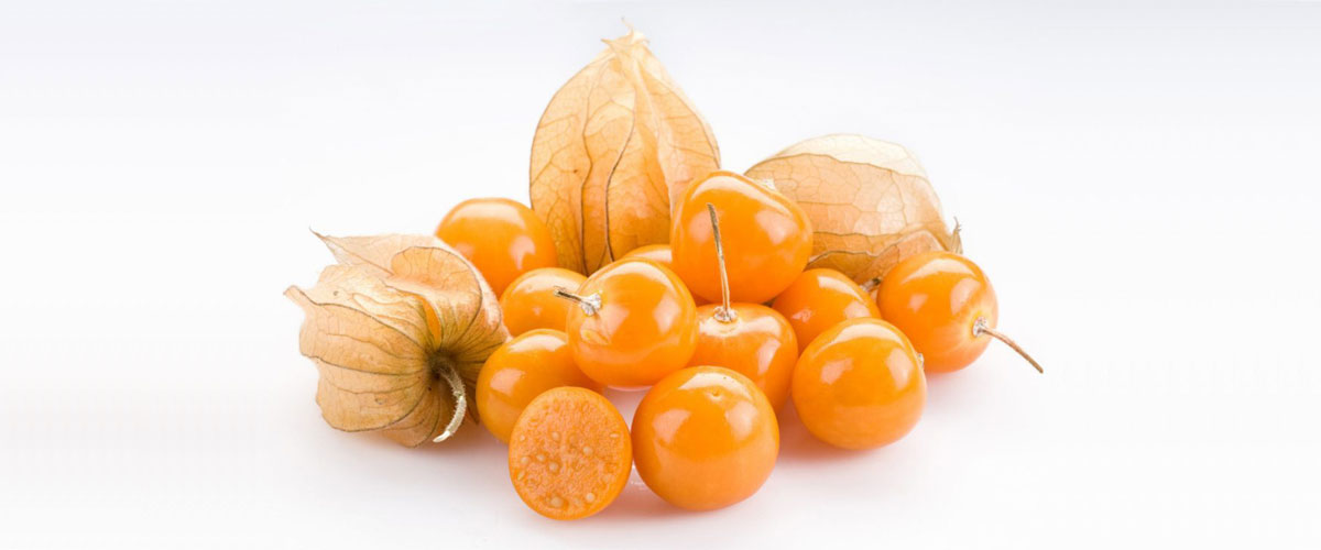Zinging with flavour and bursting with nutrition – that's our Cape Gooseberry!