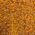 Dried Cape Gooseberries – In Stores Soon!