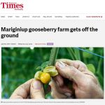 'Wanneroo Times' Features the Horti-Pride Story – PRESS